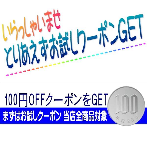 いらっしゃいませ まずはお試しクーポン 100円OFF