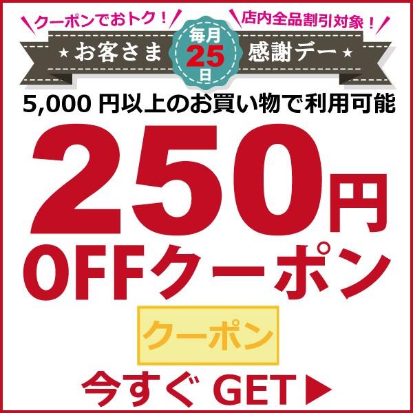 【毎月25日はお客様感謝デー】250円割引クーポン