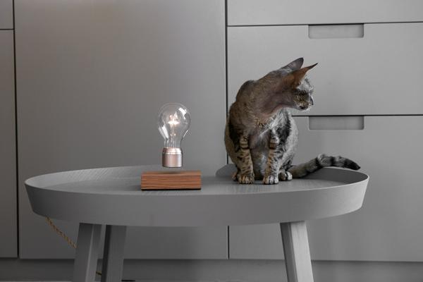 FLYTE フライト LEDライト スタンド 間接照明 照明 インテリア ライト 電球