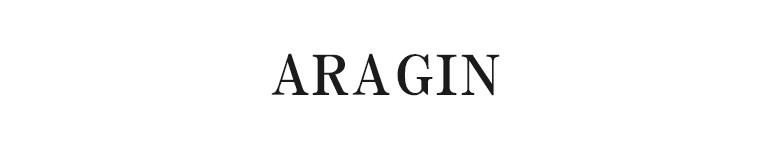 ARAGIN アラジン