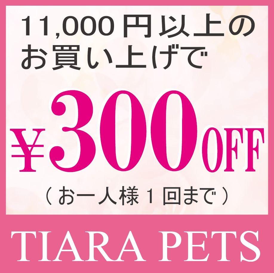 10,000円(税抜)以上のお買い物で300円OFFクーポン