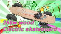 電動スケートボード 250W ウッドタイプ