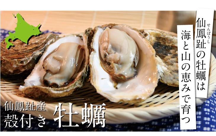 せんぽうしの牡蠣