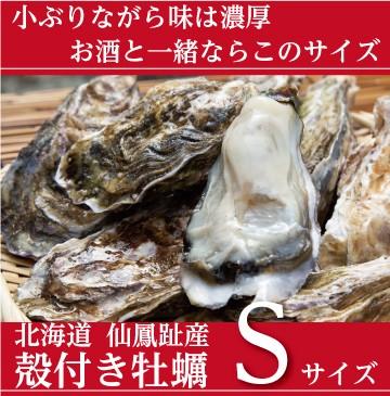 仙鳳趾の殻付き牡蠣 Sサイズ