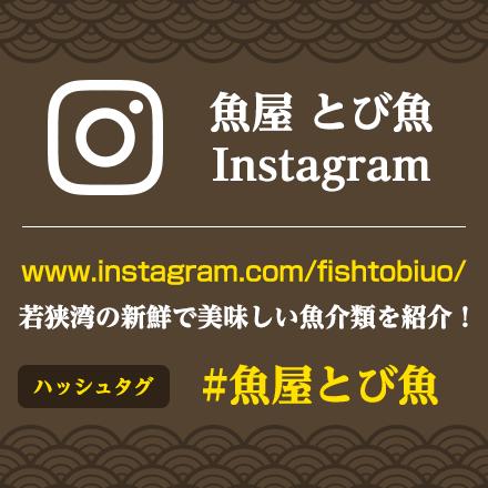 魚屋 とび魚 Instagram