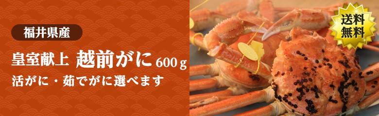 【冬の味覚】 皇室献上 最高級の越前かにを未冷凍でお届け 600g×1杯