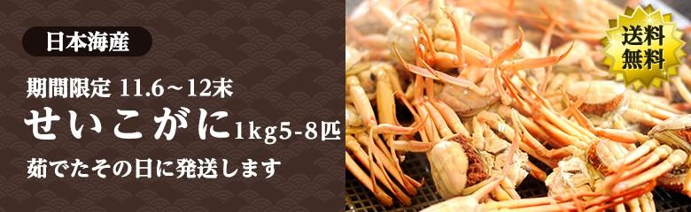 【期間限定】せいこがに 日本産海 ボイル たっぷり1kg(5-8杯) 送料無料