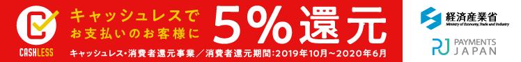 5パーセント