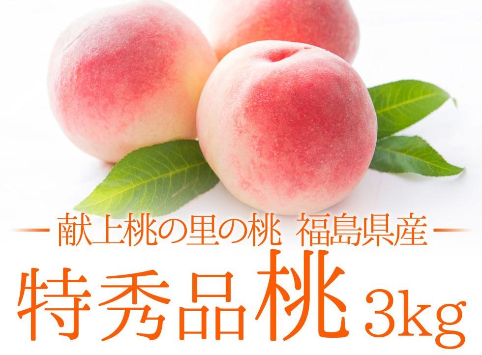 福島県産特秀品【桃】3kg