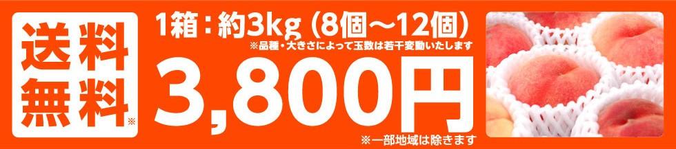 1箱:約3キロ(8個〜12個)3,800円