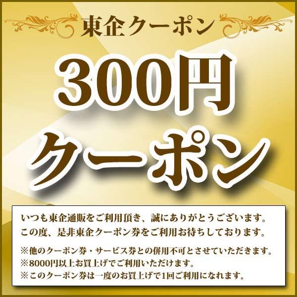東企クーポン券(300円OFF)