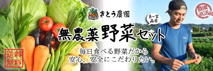 無農薬野菜セット 西日本