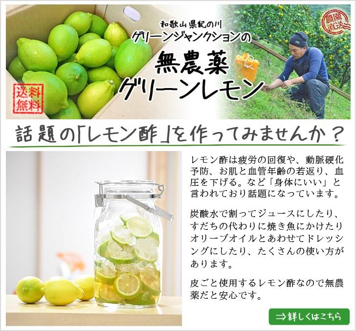 レモン、グリーンレモンレシピ