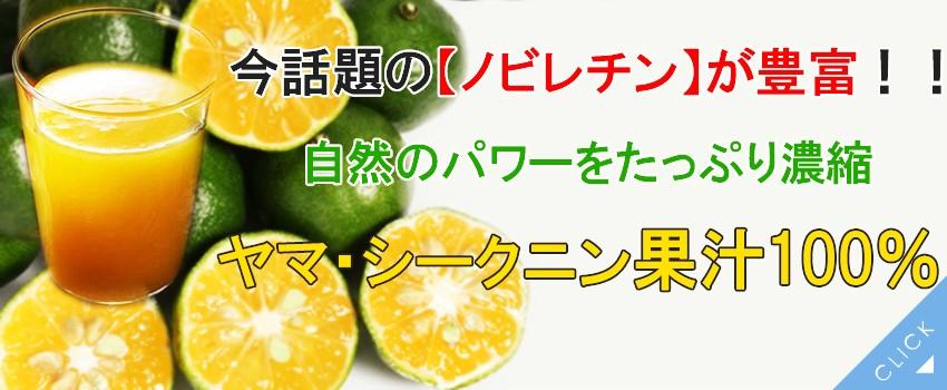 シークニン果汁ヘッダー