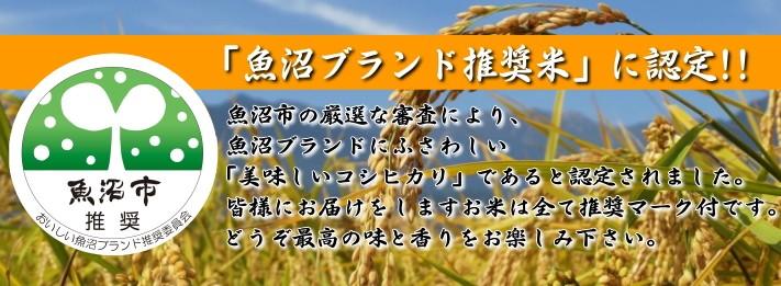 魚沼ブランド推奨米に認定されました!