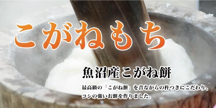 魚沼産こがね餅 魚沼産こがね餅 最高級の「こがね餅」を昔ながらの杵つきにこだわり、コシの強いお餅を作りました。