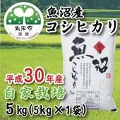 魚沼産コシヒカリ2kg自家栽培米