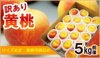 黄桃5kg