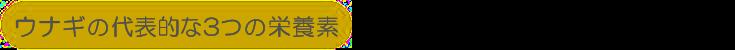ウナギの代表的な3つの栄養素