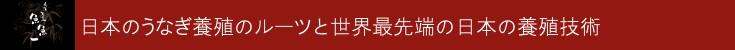 うなぎの刺身 日本のうなぎ養殖のルーツと世界最先端の日本の養殖技術  究極のうなぎ料理 静岡県 浜名湖産 最高級