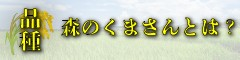 九州熊本県の美味しいお米の品種森のくまさんとは
