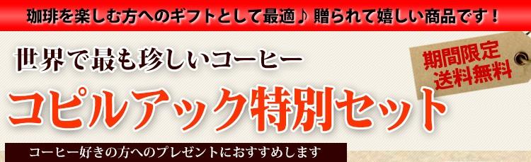 【コピルアックキャニスター付き】 限定品 スマトラ アチェ コピルアック セット