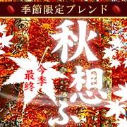季節のブレンド・秋想ふ