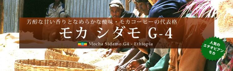 芳醇な甘い香りとなめらかな酸味・モカコーヒーの代表格 モカ シダモ G-4 人気のエチオピアンモカ Mocha Sidamo G4 - Ethiopia