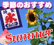 季節のおすすめ(夏)