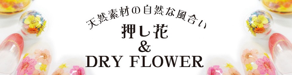 押し花のバナー