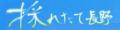 採れたて長野 ヤフー店 ロゴ
