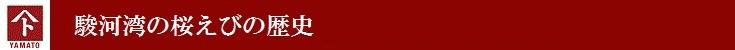 駿河湾の桜えびの歴史