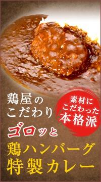 鶏ハンバーグ特製カレー