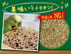 無農薬栽培小鳥の餌