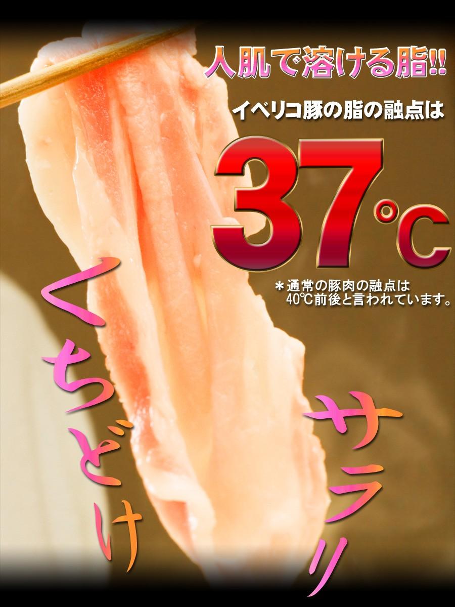 口溶け融点37度