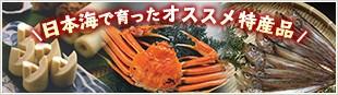 日本海で育ったおススメ特産品