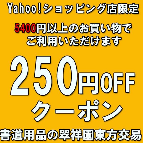 5400円以上のお買い物でご利用いただけます250円OFFクーポン