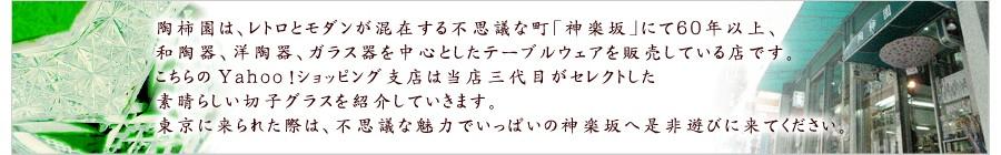 陶柿園は、レトロとモダンが混在する不思議な町「神楽坂」にて60年以上、和陶器、洋陶器、ガラス器を中心としたテーブルウエアを販売している店です。こちらの楽天市場支店は当店三代目がセレクトした可愛らしい雑貨や、実店舗でも大人気の食器やガラス器をご紹介していきます。東京に来られた際は、不思議な魅力でいっぱいの神楽坂へ是非遊びに来て下さい。