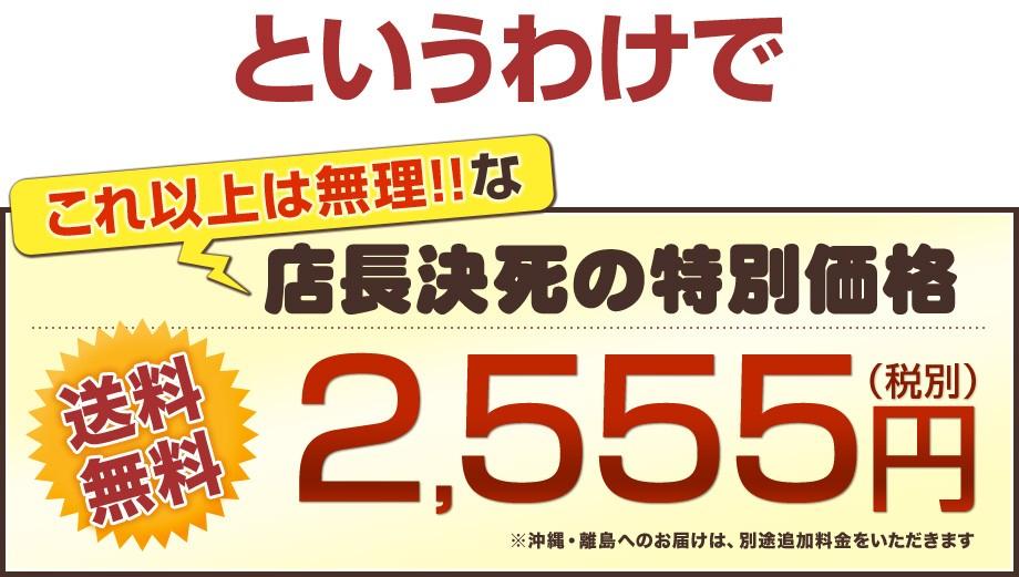 店長限界!送料無料2555円!!