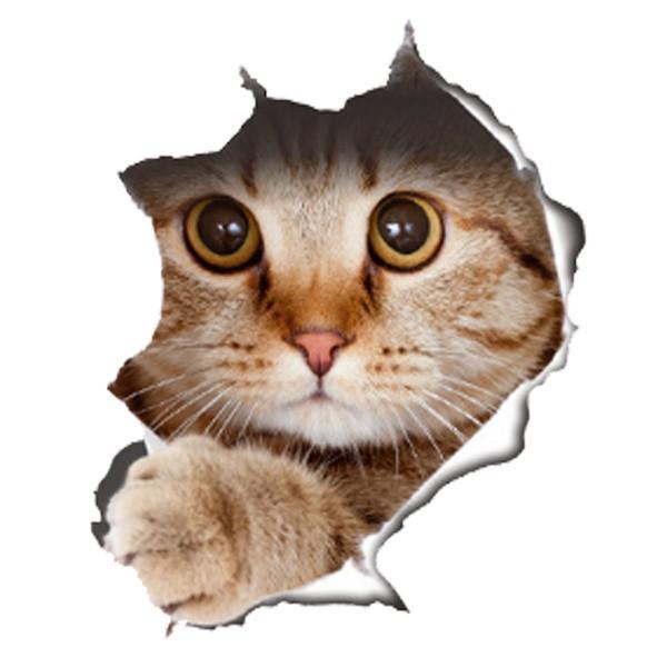 ウォールステッカー 猫 犬 シール式 動物 剥がせる 装飾 壁紙 飾りつけ 送料無料 選べる ポイント消化|tradism|07