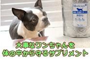 日用品動物用サプリメント