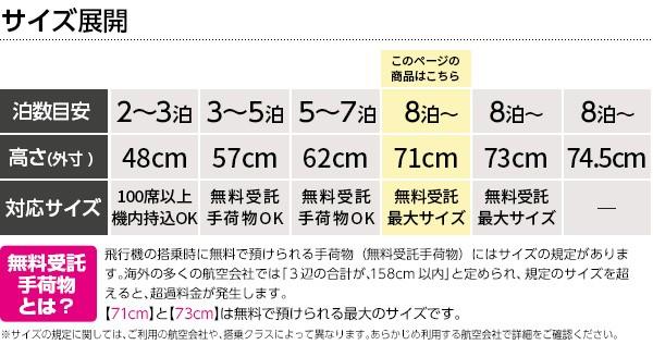ロジェール スーツケース N.CUBO-L ハードキャリー LLサイズ 158cm以内