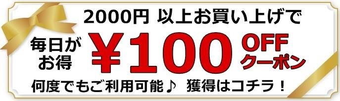 【トレジャーハウス!Yahoo!ショップ】100円OFF!クーポン【店内全品対象】