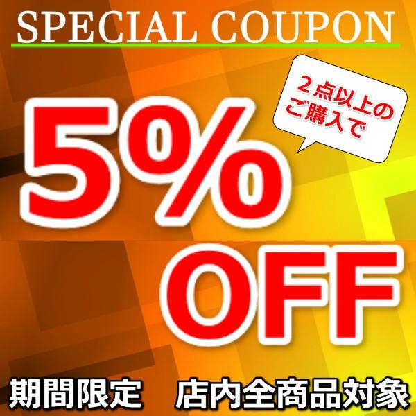 特別企画 2点以上のご購入で5%OFFクーポン!!