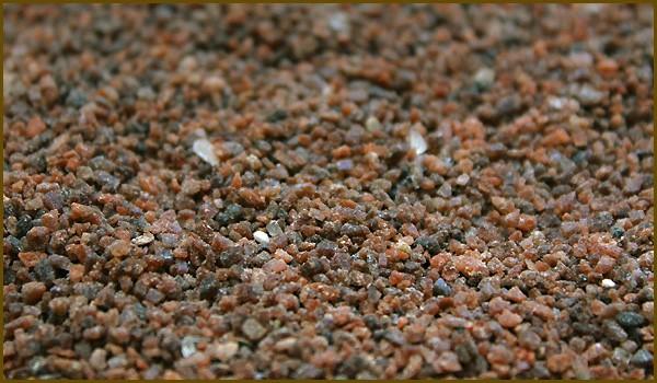 ヒマラヤ岩塩(ブラックソルト)600gに増量!を葉とブロックと一緒に撮影