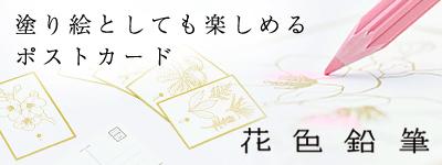 花色鉛筆ポストカード