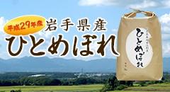 岩手県奥州市江刺産ひとめぼれ