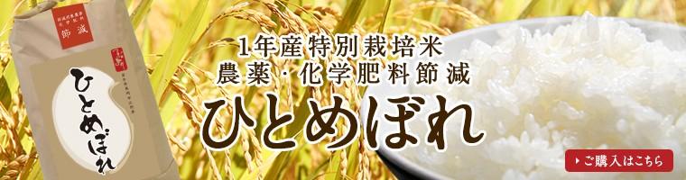 【新米】1年産農薬・化学肥料節減 ひとめぼれ
