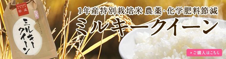 【新米】1年産農薬・化学肥料節減 ミルキークイーン