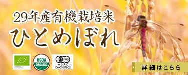 平成29年産有機栽培ひとめぼれ